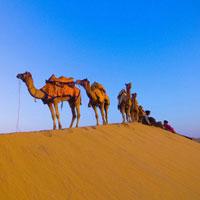 Rajasthan Package: Jaipur - Jodhpur - Jaiselmer - Udaipur - Pushkar