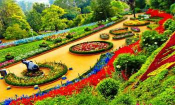Ooty Honeymoon From Bangalore Package