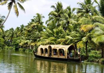 Kerala Honeymoon Ex Cochin Package, 5 Nights 6 Days