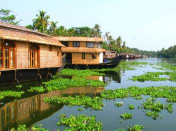Kerala Honeymoon Ex Cochin Package 6 Nights 7 Days