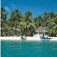 Viper Island Tour Package