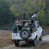 Gujarat - Wild Life Tour