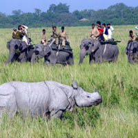 Assam Extra Vaganza Tour