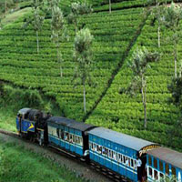 Hills Of Tamilnadu Package