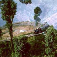 Darjeeling Tour (4 D & 3 N)