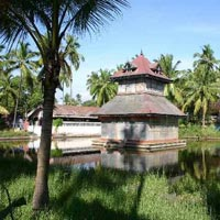 Enchanting Kerala Tour (7 N & 8 D)