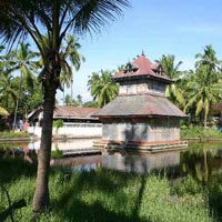 Gateway of Kerala Tour (4 N & 5 D)