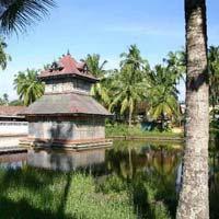 Vibrant Kerala Tour (6 N & 7 D)