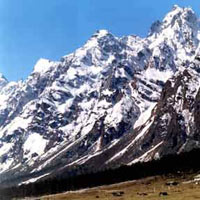 Lachen & Gurudongmar With Lachung & Yumthang Package (3 D & 2 N)