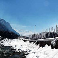 Lachen & Gurudongmar With Lachung & Yumthang Package(4 D & 3 N)