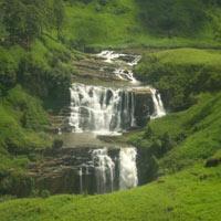 Best of Sri Lanka Holidays Package (5 D & 4 N)