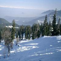 Kashmir Budget & Economical Package (4 D & 3 N )
