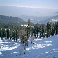 Kashmir Deluxe - 3 Star Package (8 D & 7 N)