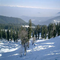 Kashmir Deluxe - 3 Star Package (9 D & 8 N)