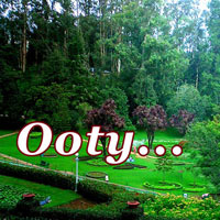 Ooty, Heaven on Earth 3 Nights & 4 Days