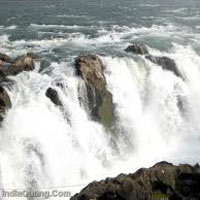 'Heart of India' Madhya Pradesh Jabalpur – Kanha – Pachmarhi 7 Nights & 8 Days