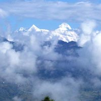 Delhi - Muketeshwar - Mt. Everest - Pithoragarh - Munshyari - Choukori - Kausani - Corbett Tour