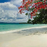 Awesome Andamans - Honeymoon Package 4 Night & 5Days