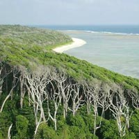Andaman Family Holiday Package 3 Night & 4Days. Option -1