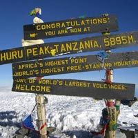 Kilimanjaro - Lemosho Route Trekking - Kilimanjaro - Lemosho Route Trekking