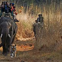 Piperiya - Pachmarhi  - Lake Tour - Jabalpur  - Bandhavgarh National Park  - Jabalpur 6 Nigh
