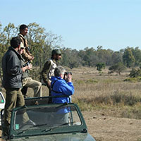 Jabalpur - Kanha - Pachmarhi  5 Nights & 6 Days