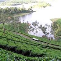 Charming Kerala (Cochin-Munnar-Thekkady-Alleppy-Kovalam-Kanyakumari-Trivandrum) 07 Nights & 08 Days
