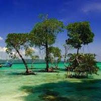Andaman Adventure (5N/6D) Tour