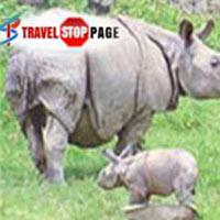 Nepal Wildlife Tour