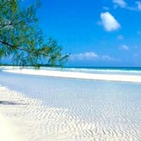 Andaman Package 3 Nights : 3 Nts Port Blair + Return Trip To Havelock Island