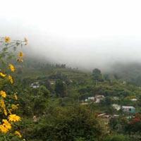 Bangalore - Mysore - Ooty - Kodai - Madurai - Rameswaram - Kanyakumari Tour