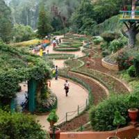 Bangalore - Mysore - Coorg - Ooty - Coimbatore Tour