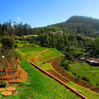 Mysore - Ooty - Coorg Tour - 05 Nts./ 06 Days