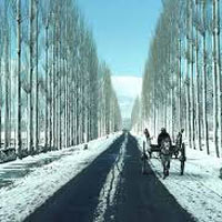 Amritsar - Patnitop - Srinagar - Pahalgam - Jammu Honeymoon Tour