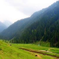 Srinagar - Pahalgam Tour Package