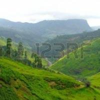 Colombo - Munneswaram Tour