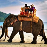 Couple Package (3 N Port Blair + Havelock Sameday)