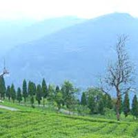 BEAUTY OF SIKKIM