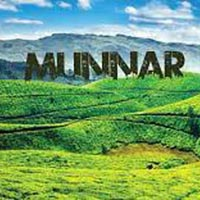 Munnar Honeymoon Tour Package