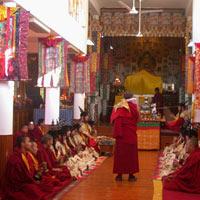 Discover Beauty of Himalaya Tour