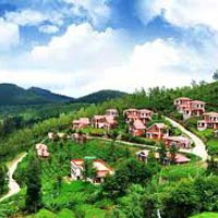 Ooty Kumarakom Tour (Honeymoon Special)