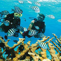 Andaman Family Package.
