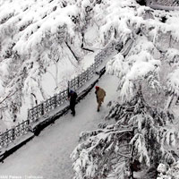 Dalhousie - Dharamshala - Manali Honeymoon Package