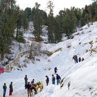 Delhi - Manali - Kullu - Shimla - Chandigarh - Delhi Tour