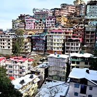 Chail - Kufri - Fagu - Shimla Tour