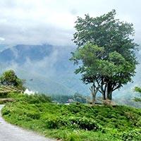 Gangtok & Darjeeling Package