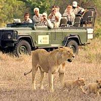 Summer Kenya Safari – Kenya Holiday Tour Package
