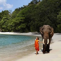 Exotic Andaman Tour