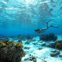 Thrilling Andaman with Scuba Diving : Ex Chennai Tour
