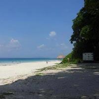 Radhanagar Beach Holidays